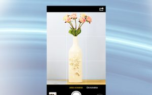 Görme engelliler için EyeSense uygulaması