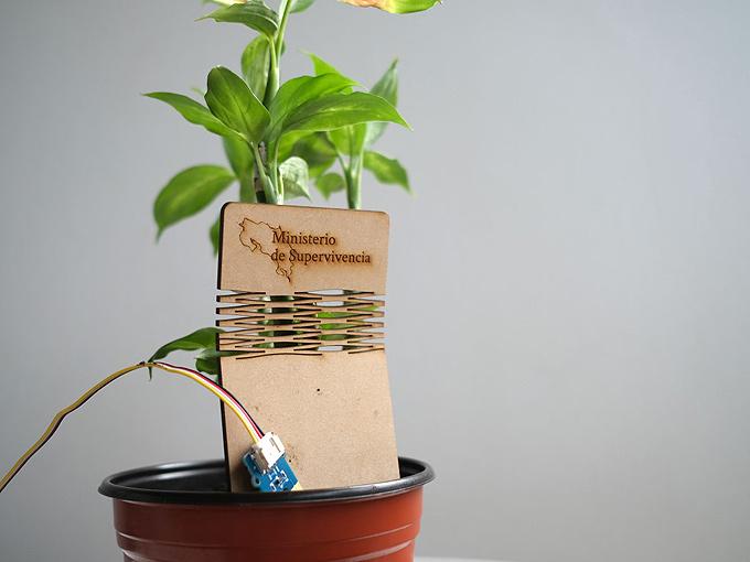 Bitkiler için giyilebilir teknoloji